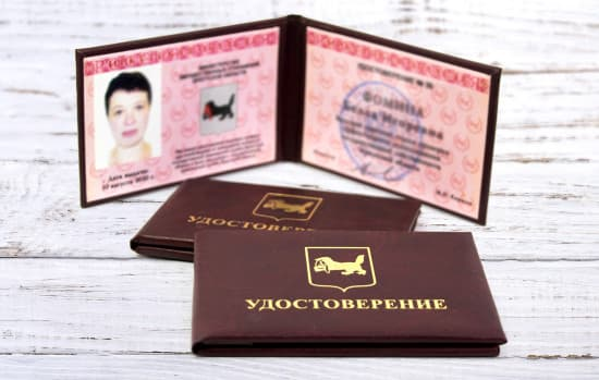 Удостоверения, пластиковые карты
