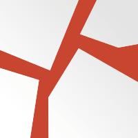 Удостоверение (корочки) бумвинил с гербом РФ ассорти Графика (Красный)